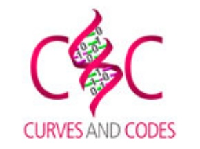 Curves and Codes
